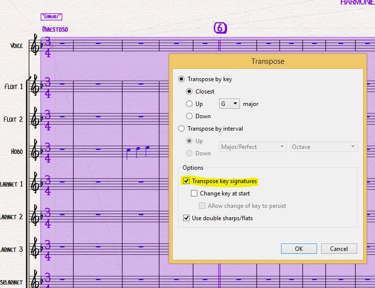 Via CTRL-A i.c.m. Transponeren kun je de toonsoort van het hele muziekstuk ineens wijzigen.